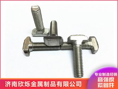 不锈钢欧标T型螺栓